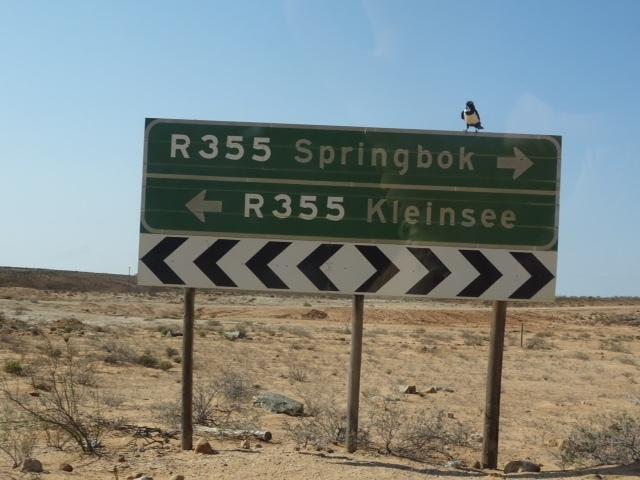 Straßenschild in der Wüste