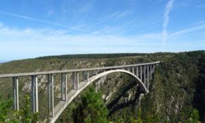 Dünnes Klopapier & DIE Brücke
