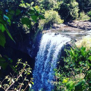 Wasserfall in den Tablelands