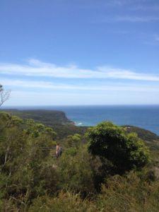 Nationalpark südlich von Sydney