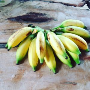 Bananen als Wechselgeld