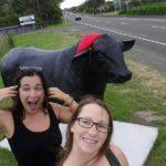Der Bulle von Bulls
