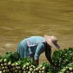 Bolivianerin am Arbeiten