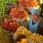 Obstfrau presst frischen Saft