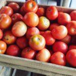Kiste Tomaten für 5 Euro