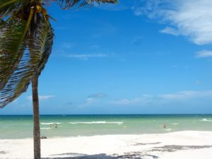 Strand, Palmen, Meer, was will man mehr?
